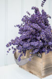Beautiful fragrant lavender bunch in rustic home styled setting Stock Images
