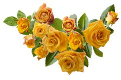 Beautiful  frame with bouquet of yellowish orange roses isolated on white background. Overhead view Royalty Free Stock Photography