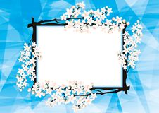 Beautiful frame with cherry blossoms. Royalty Free Stock Photos