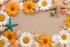 Beautiful frame consists of flowers, sea stars, sea shells lying on the sand. Royalty Free Stock Images
