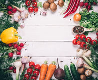 Beautiful frame of different vegetables and spices Stock Photography