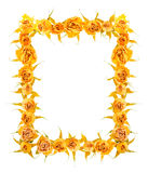 Beautiful frame of dried yellow rose flowers is isolated on whit Royalty Free Stock Images