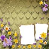Beautiful frame with irises Royalty Free Stock Photo