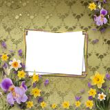 Beautiful frame with irises and daffodils Royalty Free Stock Image