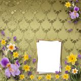 Beautiful frame with irises and daffodils Royalty Free Stock Photography