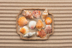 Beautiful frame made of rope and sea shells on the sand with tex Royalty Free Stock Photography