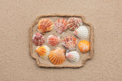 Beautiful frame made of rope and sea shells on the sand with tex Stock Photos