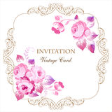 Beautiful frame with pink roses in vintage style on a white back Royalty Free Stock Photography