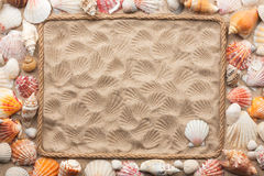Beautiful frame of rope and sea shells on the sand Stock Photography