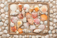 Beautiful frame of rope and sea shells on the sand Royalty Free Stock Image
