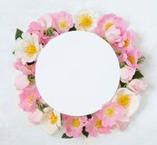 Decorative frame with pink bright roses and leaves on white background. Flat lay Royalty Free Stock Image