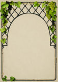 Beautiful frame with vines Stock Photography