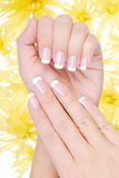 Beautiful france manicure Stock Image