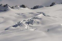 Beautiful Franz Joseph glacier in New Zealand stock photography