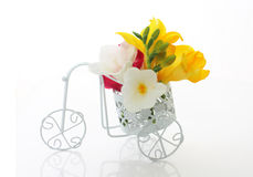 Beautiful freesia flowers  in cute vintage bike Royalty Free Stock Images