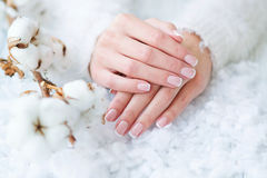 Beautiful French manicure and cotton flower Stock Photography