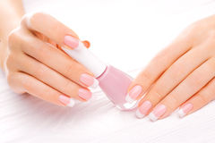 Beautiful french manicure on white Royalty Free Stock Photography