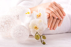 Beautiful french manicure with white orchid stock photo