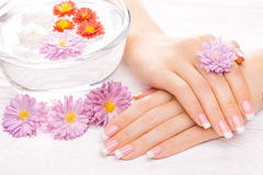 Beautiful french manicure on white wooden table Royalty Free Stock Image