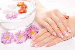 Beautiful french manicure on white wooden table Royalty Free Stock Photography