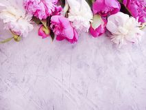 Beautiful fresh blossom holiday bouquet congratulations celebration design elegant flower peony on gray concrete background stock photography