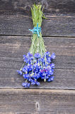 Beautiful fresh cornflower bunch on old wooden farm wall Stock Photos