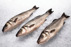 Beautiful fresh fish on the counter. In the ice Stock Photo