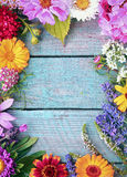 Beautiful fresh floral border Royalty Free Stock Images