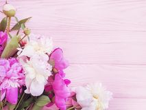 Beautiful fresh blossom holiday congratulations celebration design elegant flower peony on pink wooden background stock photo