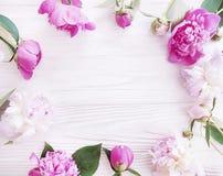 Beautiful fresh blossom bouquet celebration design elegant flower peony on white wooden background royalty free stock image