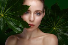 Beautiful fresh girl with perfect skin, natural make-up and green leaves. Beauty face. royalty free stock photos