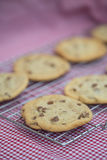 Beautiful fresh hand made chocolate chip cookies Royalty Free Stock Photography