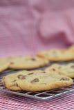 Beautiful fresh hand made chocolate chip cookies Royalty Free Stock Photo