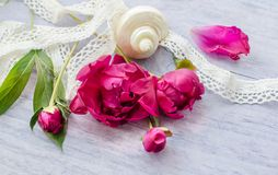 Beautiful fresh peonies on wooden surface. Beautiful fresh peoniesand and some decorations on wooden surface stock images