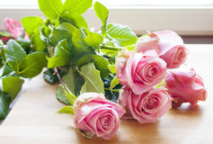 Beautiful fresh pink roses. Beautiful fresh pink roses by the window Royalty Free Stock Photos