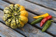 Beautiful fresh pumpkins Stock Photography