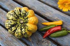 Beautiful fresh pumpkins with pepper Stock Image