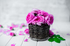 Beautiful fresh ranunculus flowers on wooden background. Beautiful fresh ranunculus flowers on wooden Stock Photo