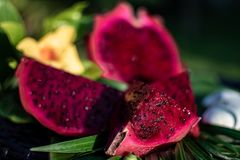 Beautiful fresh red dragon fruit pitaya cut into cubes on green leaf with stones. Fresh red dragon fruit on green leaf with stones stock image