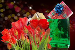Beautiful  fresh red tulips and gift Stock Photo