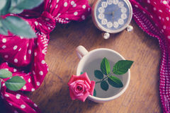 Beautiful fresh rose in a cup Royalty Free Stock Images