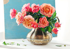Beautiful fresh roses. Royalty Free Stock Photos