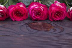 Beautiful fresh roses for the holiday. Greeting card for woman day. Five roses on wooden background royalty free stock image