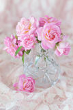 Beautiful fresh roses Royalty Free Stock Photo