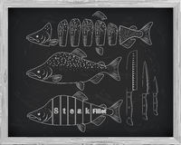 Beautiful fresh salmon and knives closeup side view drawn with c. Halk. Pink salmon cutting scheme black and white colors. Menu on blackboard Stock Images