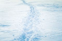 Beautiful fresh snow pattern in minimalistic style. Winter background. Norway, Northern Europe. Close up texture Stock Photography