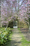 Beautiful fresh Spring blossom and archway Royalty Free Stock Photo