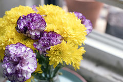 Beautiful fresh spring daisies and carnations stock photography