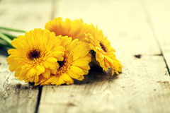 Beautiful Fresh Spring Yellow Bunch of Gerbers on Old Vintage Wooden Table. Spring Concept. Closeup. royalty free stock photography