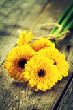 Beautiful Fresh Spring Yellow Bunch of Gerbers on Old Vintage Wooden Table. Spring Concept. Closeup. royalty free stock image